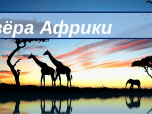 Озёра Африки 8 класс