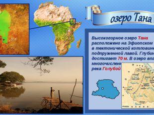Высокогорное озеро Тана расположено на Эфиопском нагорье в тектонической кот