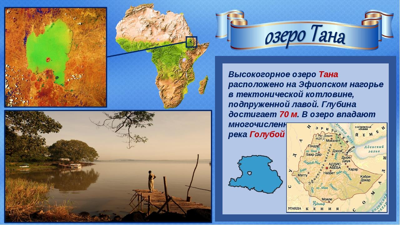Высокогорное озеро Тана расположено на Эфиопском нагорье в тектонической кот...