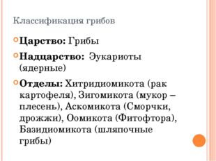 Классификация грибов Царство: Грибы Надцарство: Эукариоты (ядерные) Отделы: Х
