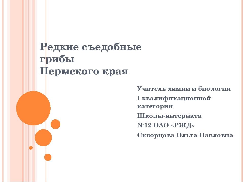 Редкие съедобные грибы Пермского края  Учитель химии и биологии I квалификац...