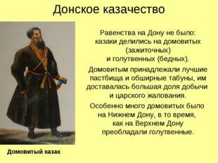 Донское казачество Равенства на Дону не было: казаки делились на домовитых (з