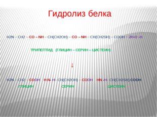 Гидролиз белка H2N – CH2 – CO – NH – CH(CH2OH) – CO – NH – CH(CH2SH) – COOH +