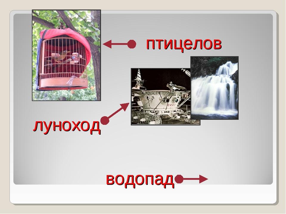 птицелов луноход водопад