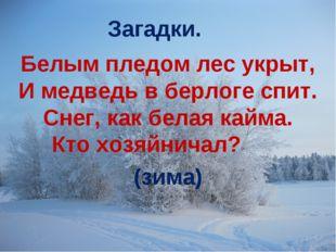 Белым пледом лес укрыт, И медведь в берлоге спит. Снег, как белая кайма. Кто