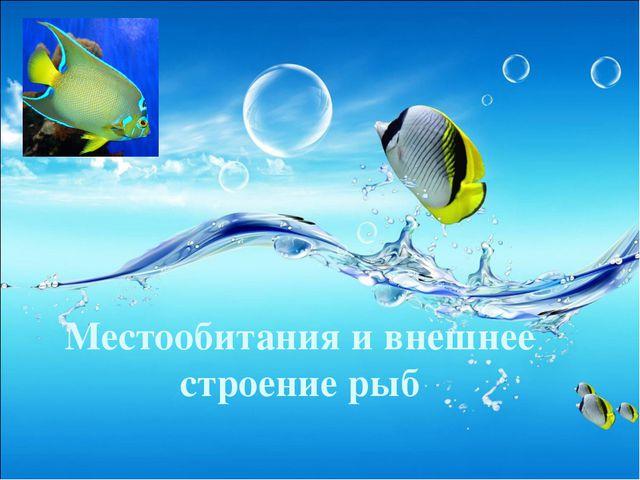Местообитания и внешнее строение рыб