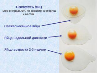 Свежесть яиц можно определить по консистенции белка и желтка. Свежеснесённое