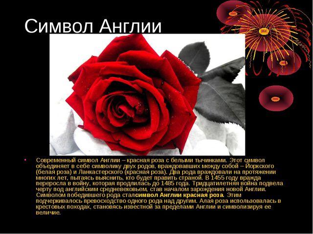 Символ Англии Современный символ Англии – красная роза с белыми тычинками. Эт...