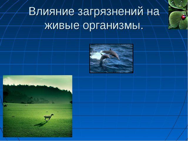 Влияние загрязнений на живые организмы.