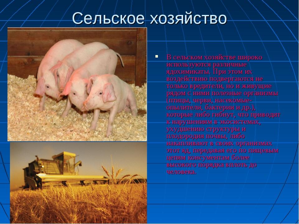 Сельское хозяйство В сельском хозяйстве широко используются различные ядохими...