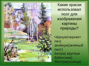 Какие краски использовал поэт для изображения картины природы? Чёрную(чернеет
