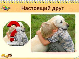 Настоящий друг Каким должен быть настоящий друг? Вот в чем вопрос? Сейчас вы