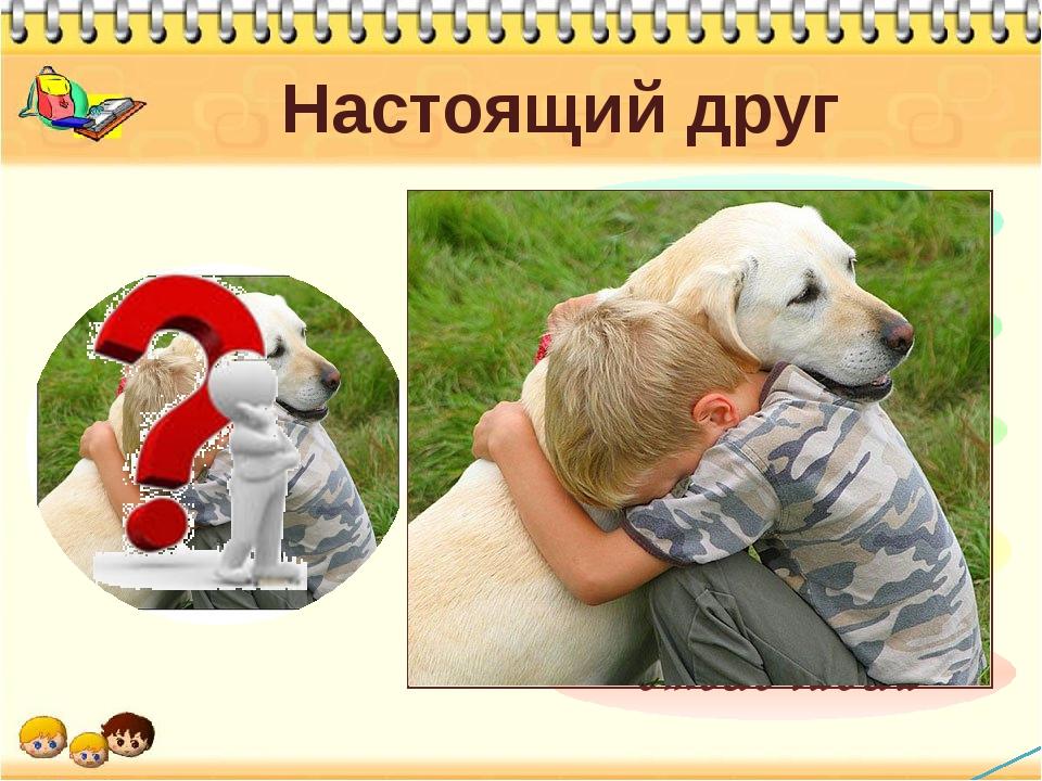 Настоящий друг Каким должен быть настоящий друг? Вот в чем вопрос? Сейчас вы...