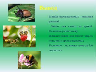 Вывод Главная задача насекомых – опыление растений. Значит, они влияют на уро