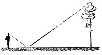 Определение высоты предметов при помощи лужи