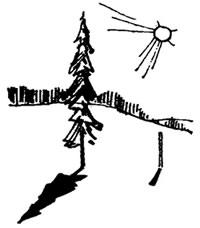 Определение высоты предметов по тени