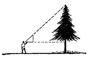 Определение высоты предметов при помощи равнобедренного треугольника