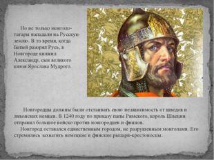 Но не только монголо-татары нападали на Русскую землю. В то время, когда Бат