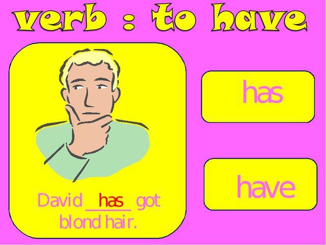 has have David _____ got blond hair. has