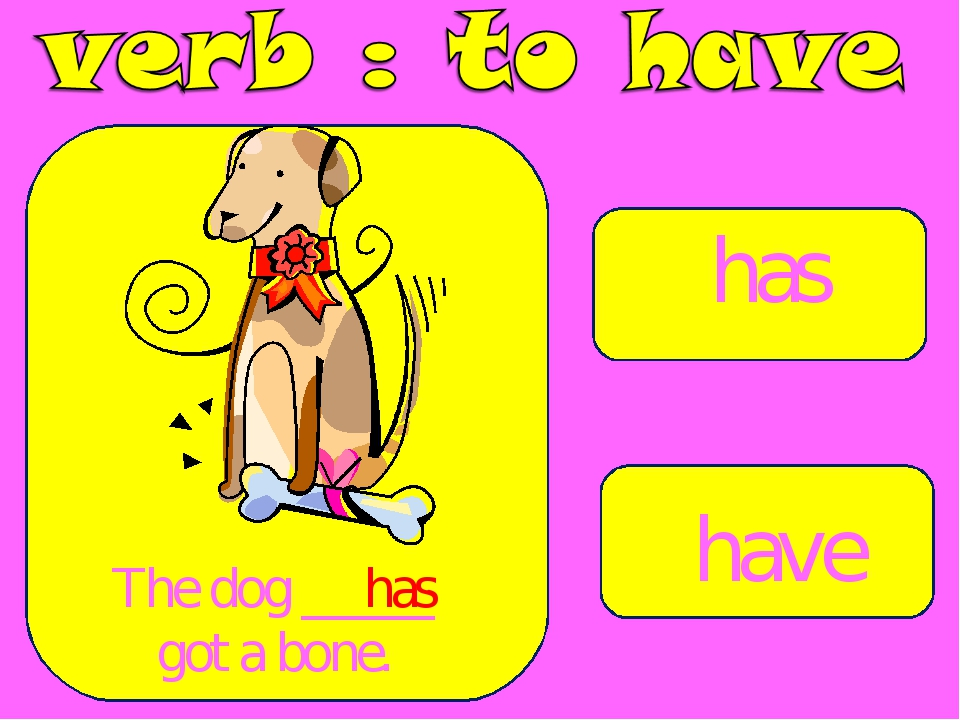 has have The dog _____ got a bone. has