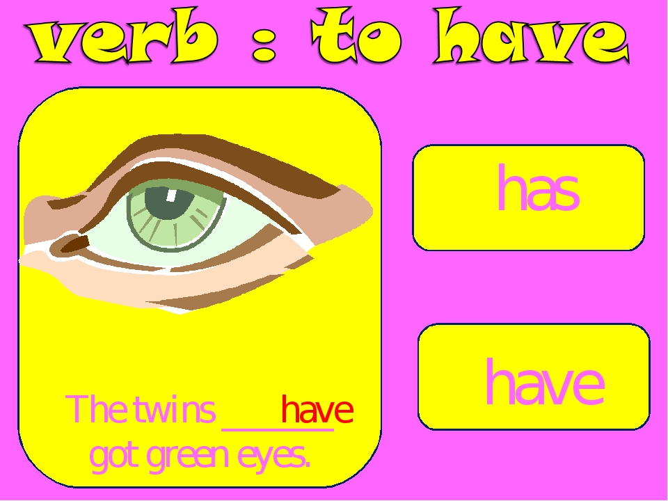 has have The twins ______ got green eyes. have