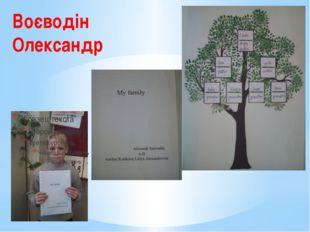 Воєводін Олександр