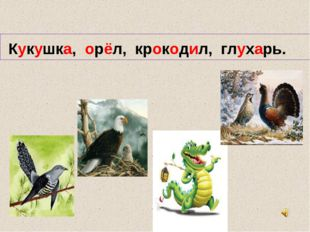 Кукушка, орёл, крокодил, глухарь.