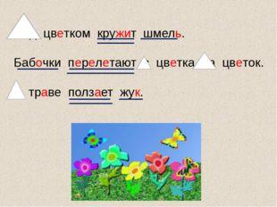 Над цветком кружит шмель. Бабочки перелетают с цветка на цветок. В траве полз