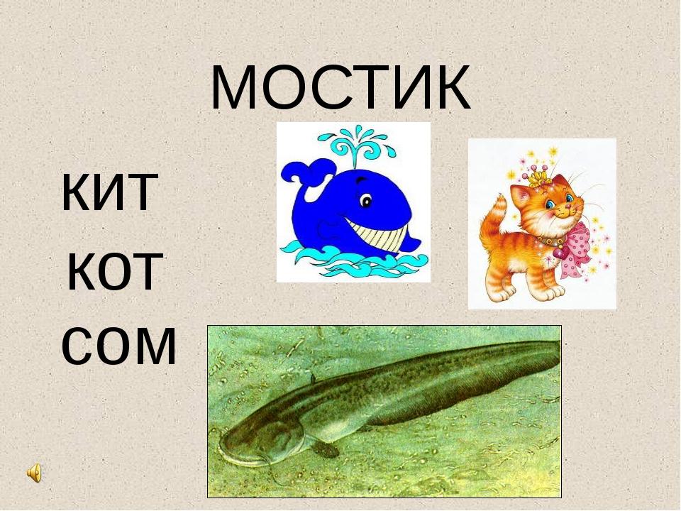 МОСТИК кит кот сом
