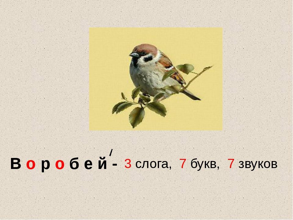 В о р о б е й - 3 слога, 7 букв, 7 звуков
