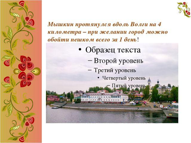 Мышкин протянулся вдоль Волги на 4 километра – при желании город можно обойт...
