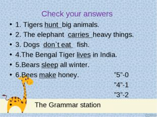 Check your answers 1. Tigers hunt big animals. 2. The elephant carries heavy