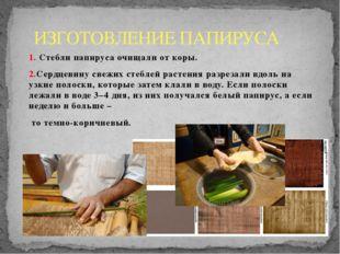 ИЗГОТОВЛЕНИЕ ПАПИРУСА 1. Стебли папируса очищали от коры. 2.Сердцевину свежих
