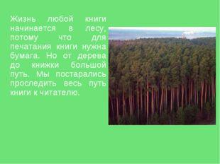 Жизнь любой книги начинается в лесу, потому что для печатания книги нужна бу