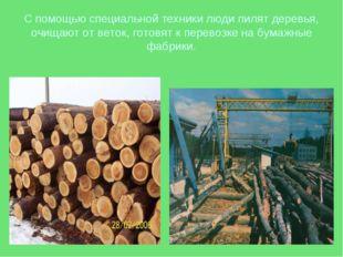 С помощью специальной техники люди пилят деревья, очищают от веток, готовят к