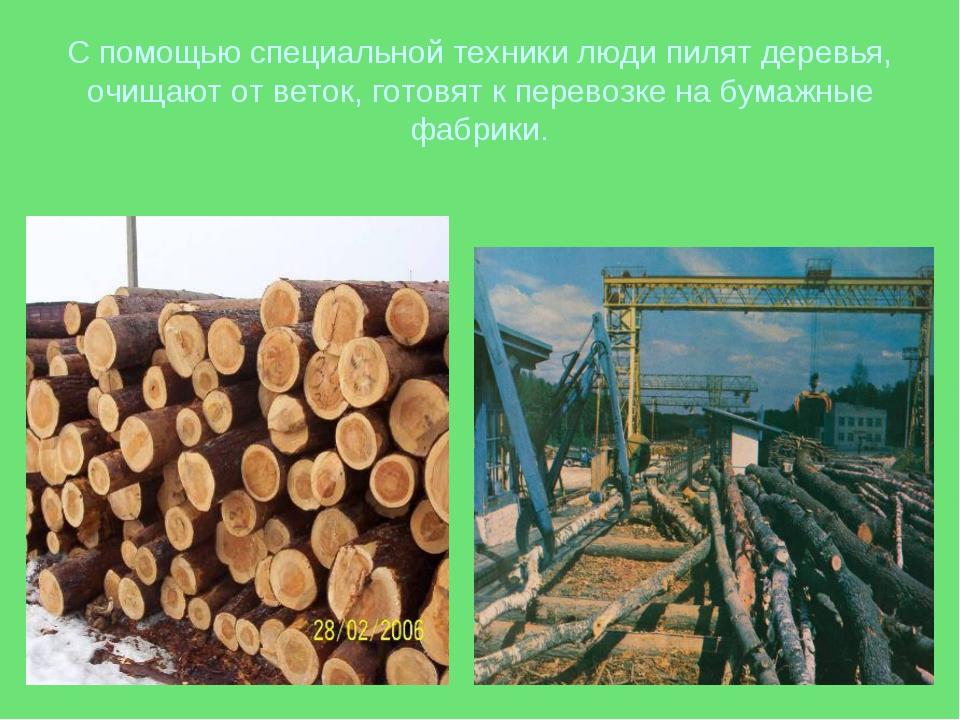С помощью специальной техники люди пилят деревья, очищают от веток, готовят к...
