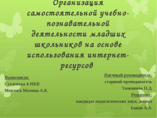 Организация самостоятельной учебно-познавательной деятельности младших школьн