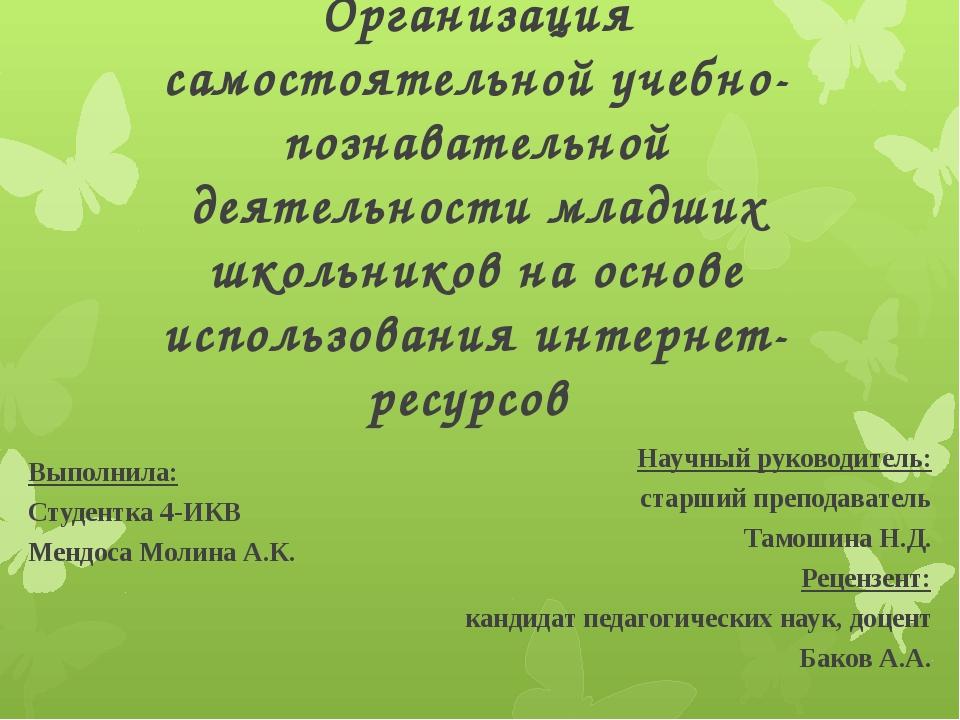 Организация самостоятельной учебно-познавательной деятельности младших школьн...