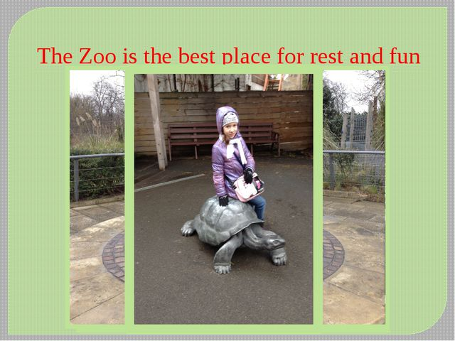 The Zoo is the best place for rest and fun