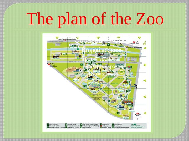 The plan of the Zoo