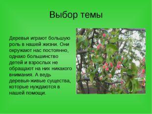 Выбор темы Деревья играют большую роль в нашей жизни. Они окружают нас постоя