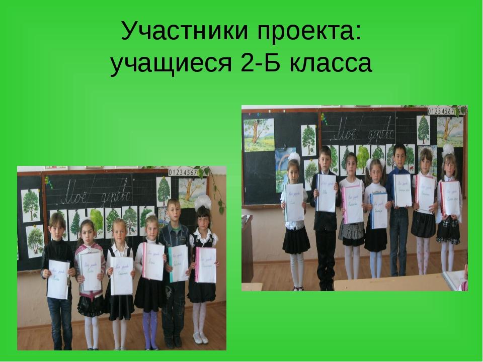 Участники проекта: учащиеся 2-Б класса