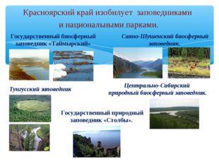 Красноярский край изобилует заповедниками инациональными парками. Государс