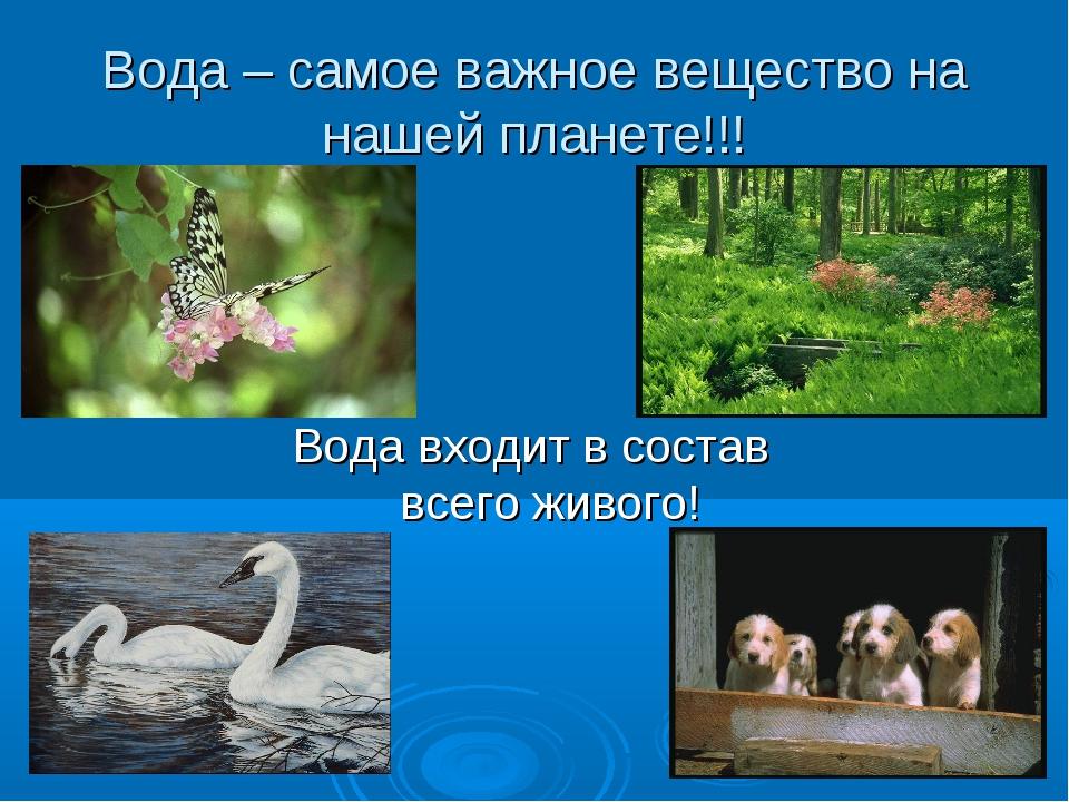 Вода – самое важное вещество на нашей планете!!! Вода входит в состав всего ж...