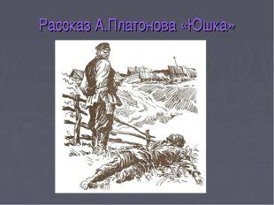 Рассказ А.Платонова «Юшка»