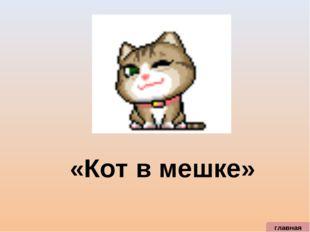 главная «Кот в мешке»