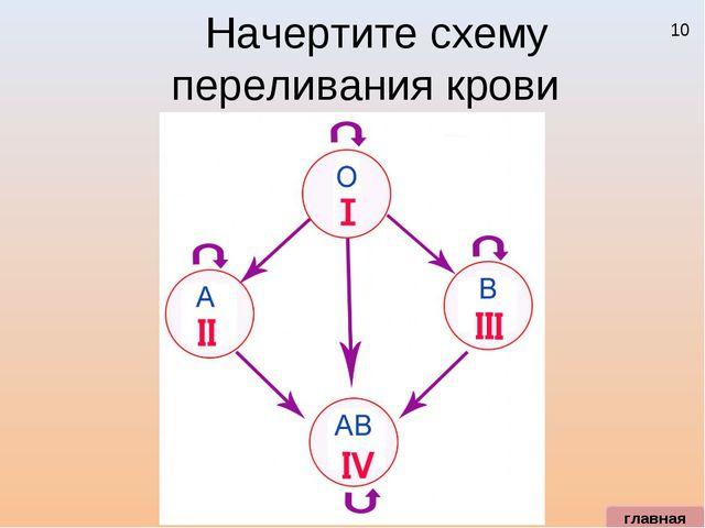 10 Начертите схему переливания крови главная