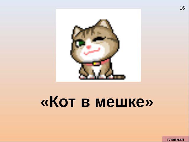 «Кот в мешке» главная 16