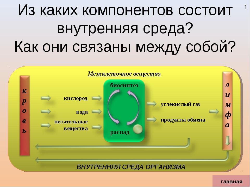 Из каких компонентов состоит внутренняя среда? Как они связаны между собой? г...