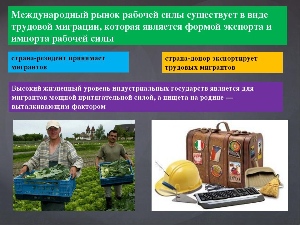 Международный рынок рабочей силы существует в виде трудовой миграции, которая...